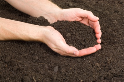Poprawa właściwości gleby